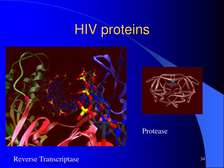 HIV proteins