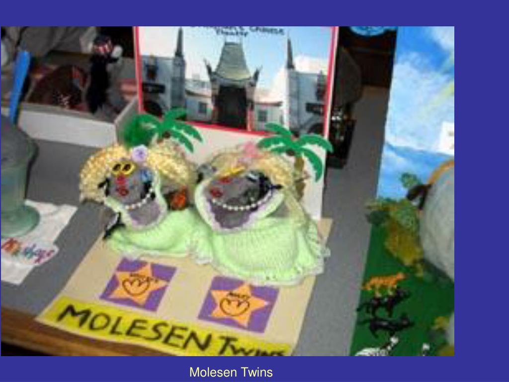 Molesen Twins