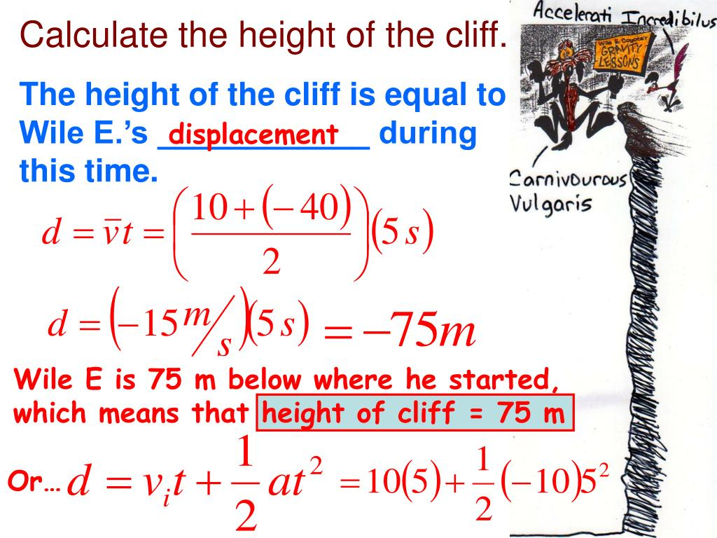 Calculate the height of the cliff.