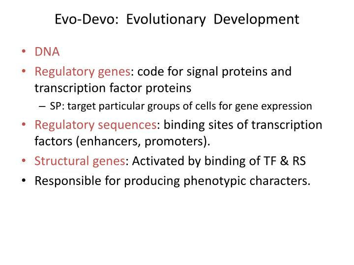 Evo devo evolutionary development