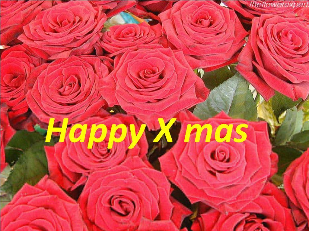 Happy X
