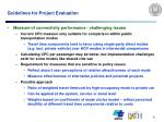 guidelines for project evaluation20