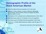 demographic profile of the black american market