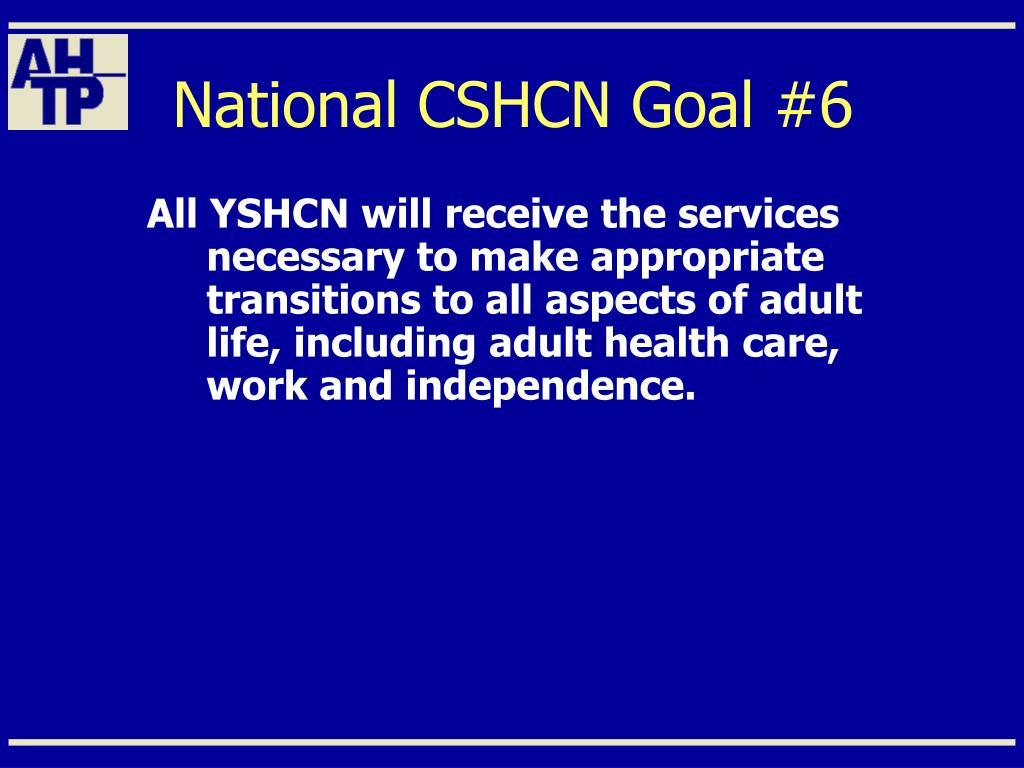 National CSHCN Goal #6