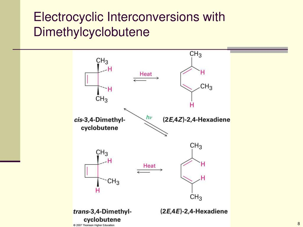 Electrocyclic Interconversions with Dimethylcyclobutene