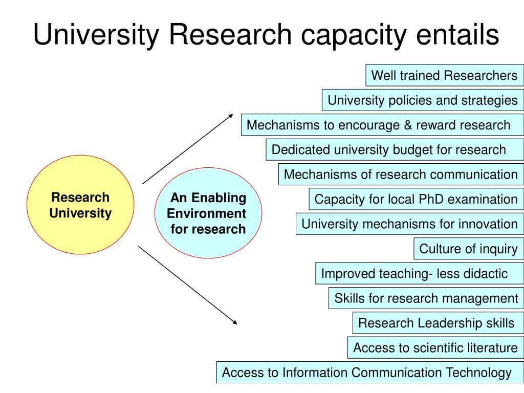 University Research capacity entails