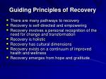 guiding principles of recovery