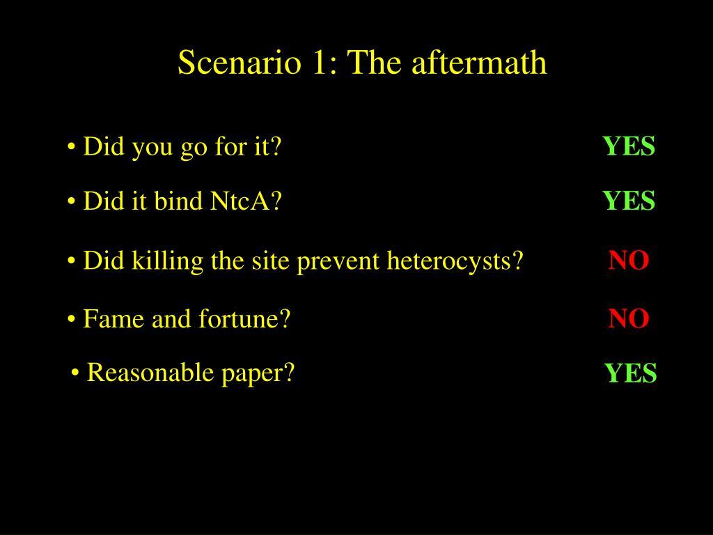 Scenario 1: The aftermath