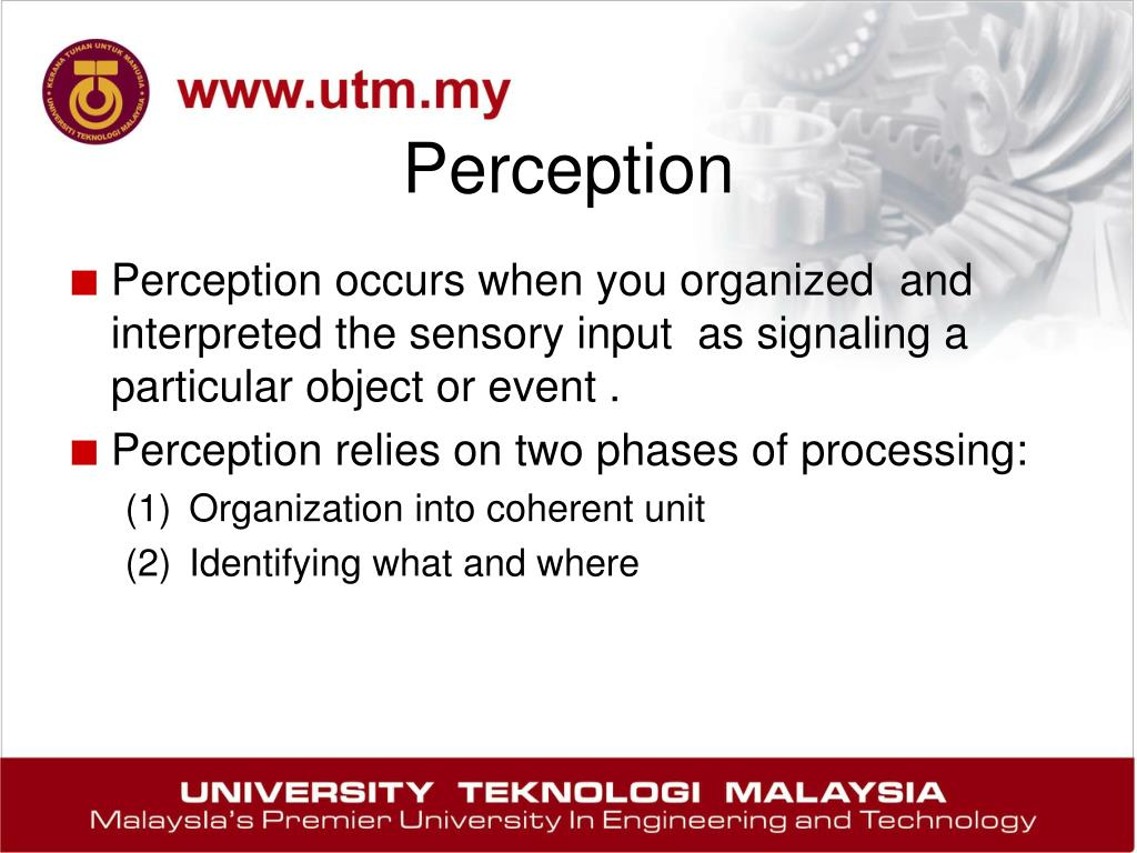 perception ppt Sensation and perception overview of this lecture why study perception what  are the steps in the perceptual process how is perception measured.