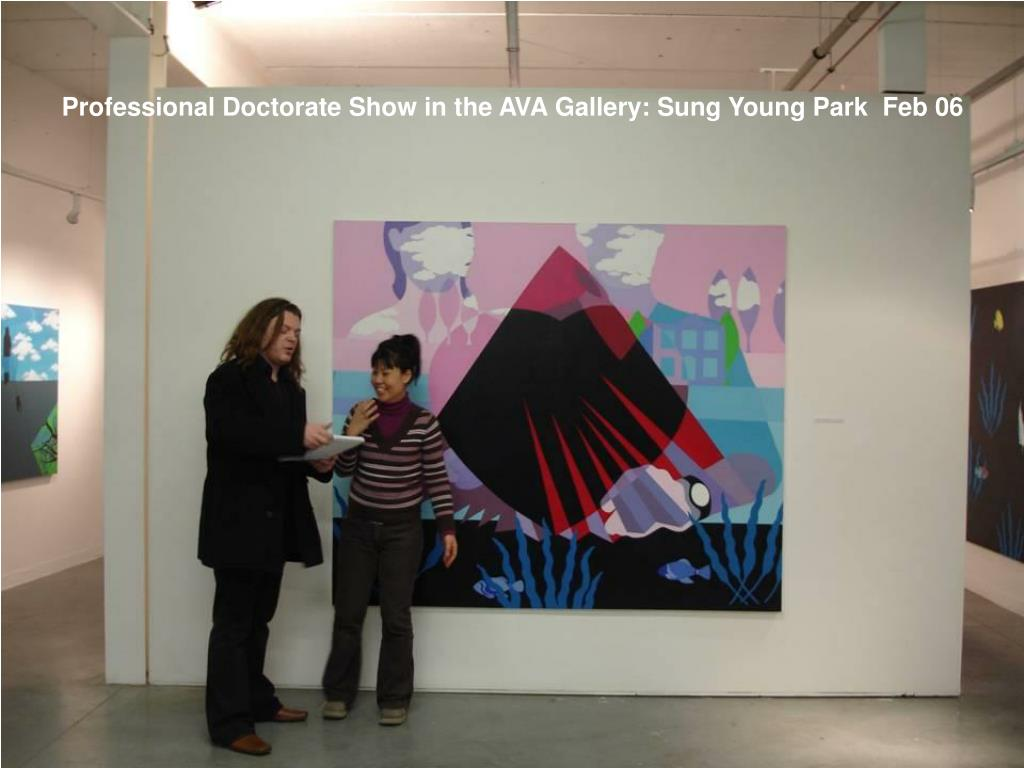 Professional Doctorate Show in the AVA Gallery: Sung Young Park  Feb 06