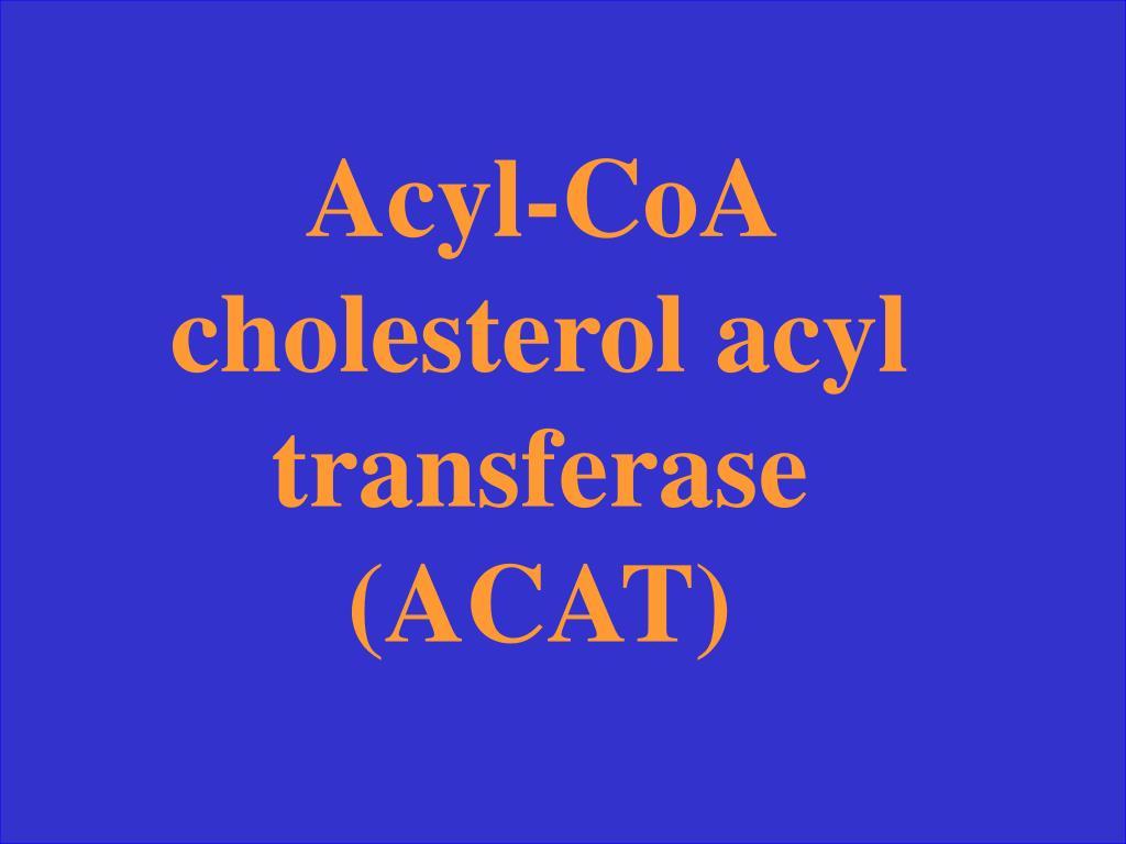 Acyl-CoA cholesterol acyl transferase (ACAT)