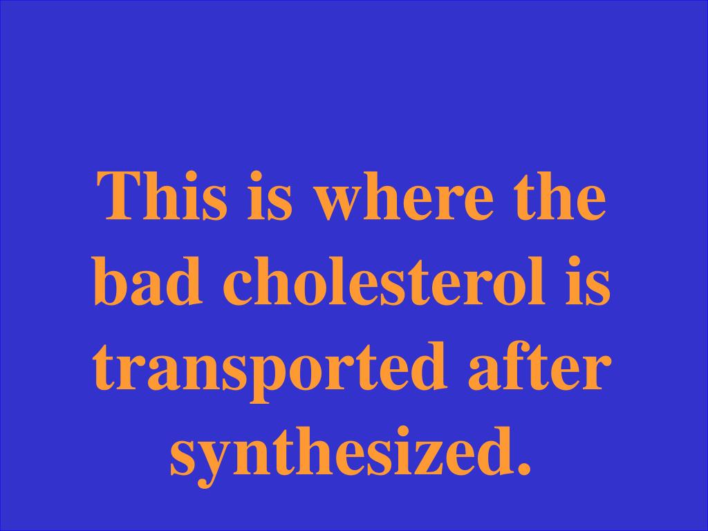 This is where the bad cholesterol is transported after synthesized.