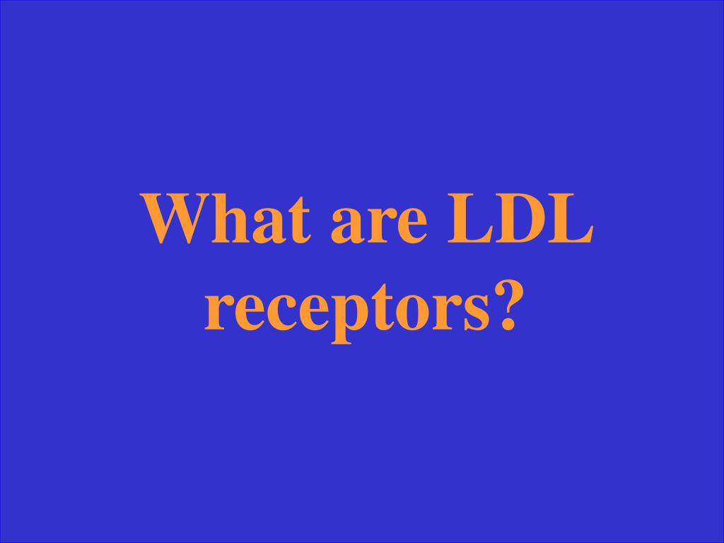 What are LDL receptors?