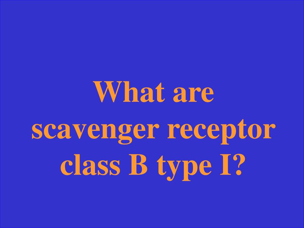 What are scavenger receptor class B type I?