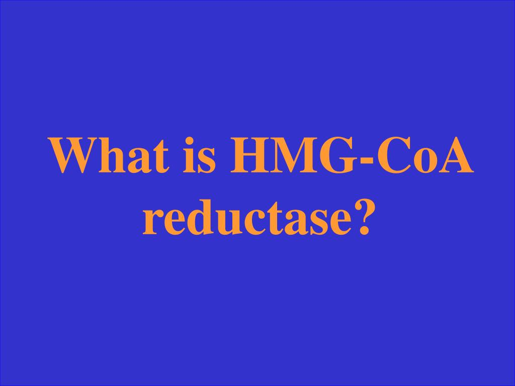 What is HMG-CoA reductase?