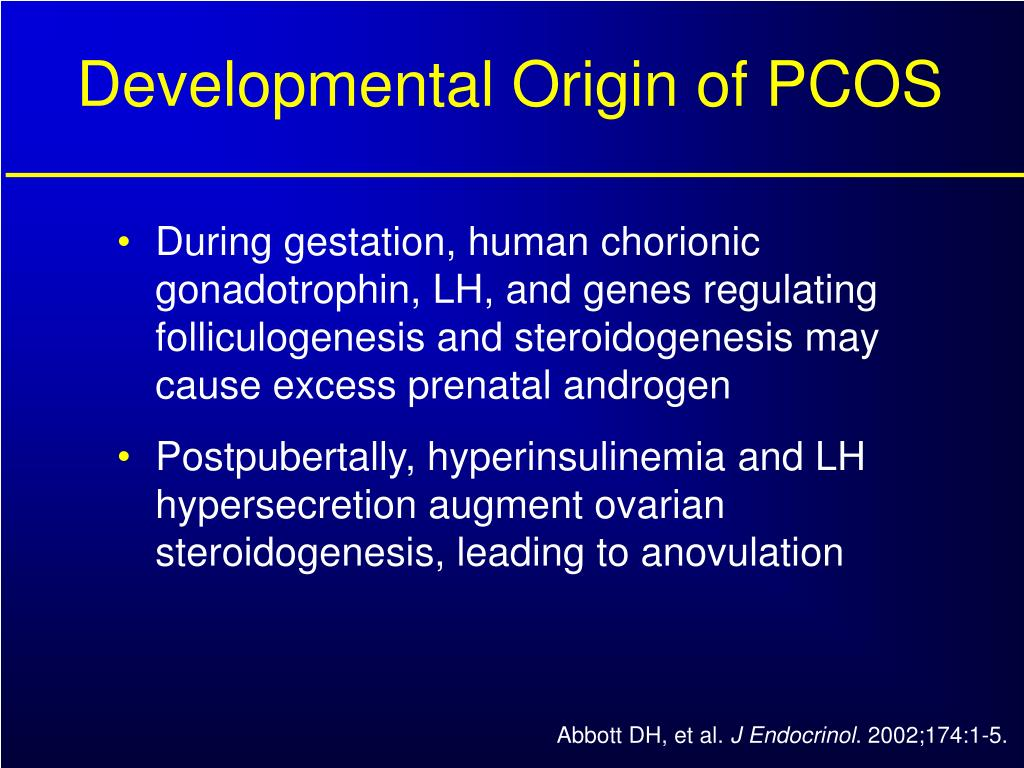 Developmental Origin of PCOS