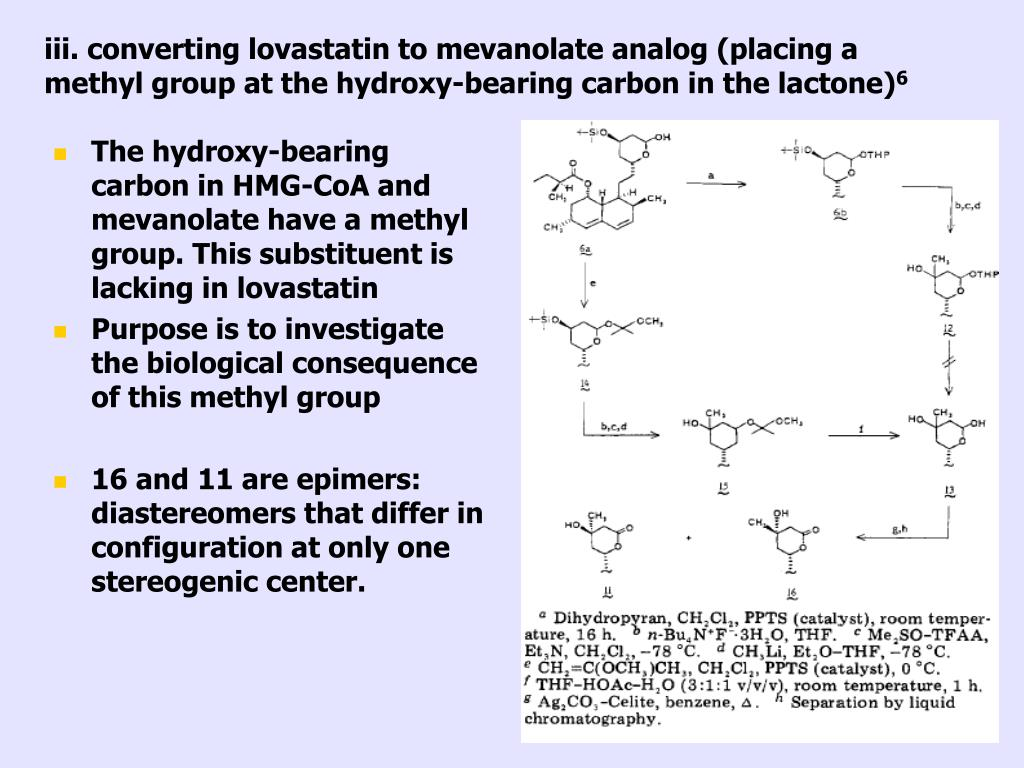 iii. converting lovastatin to mevanolate analog (placing a methyl group at the hydroxy-bearing carbon in the lactone)