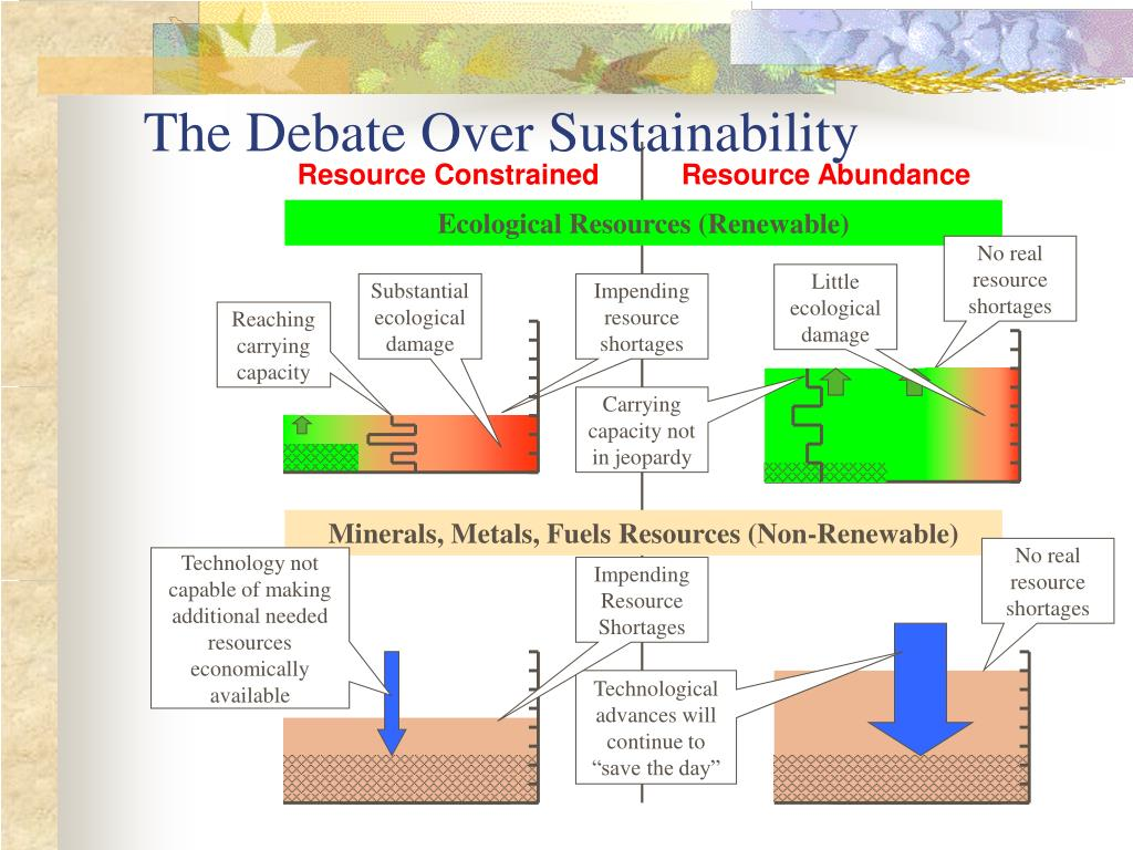 The Debate Over Sustainability