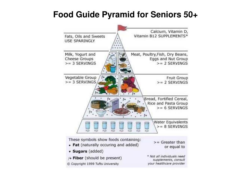 Food Guide Pyramid for Seniors 50+