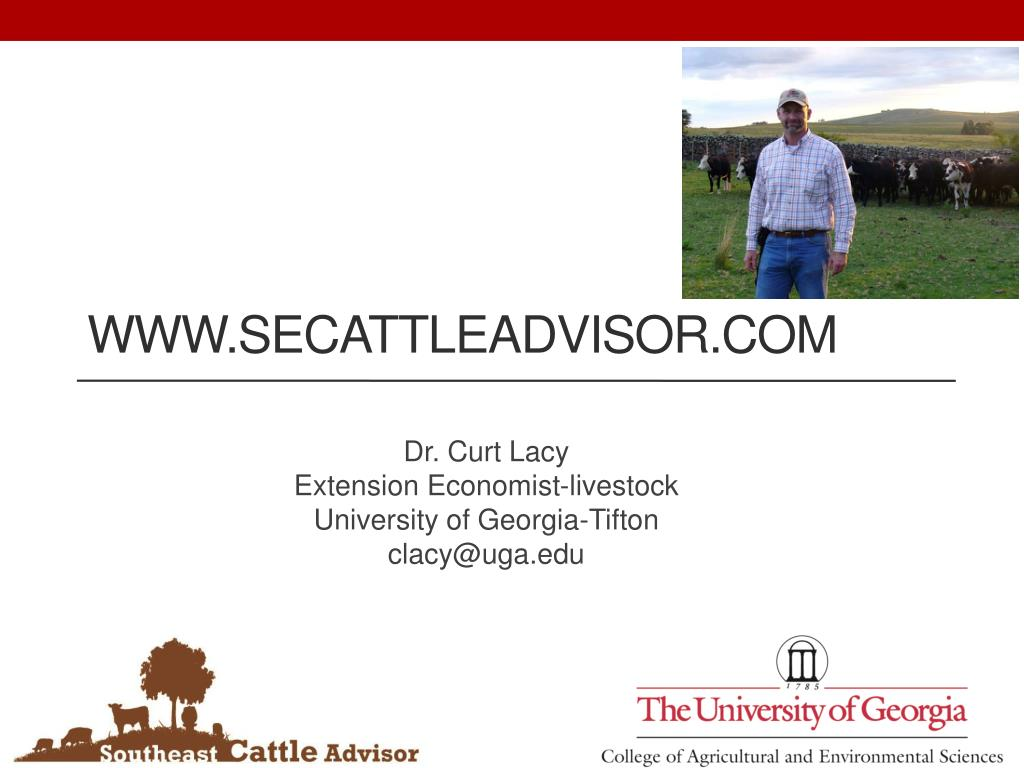 www.secattleadvisor.com