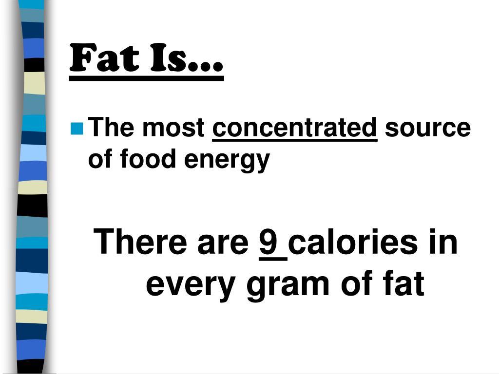 Fat Is…