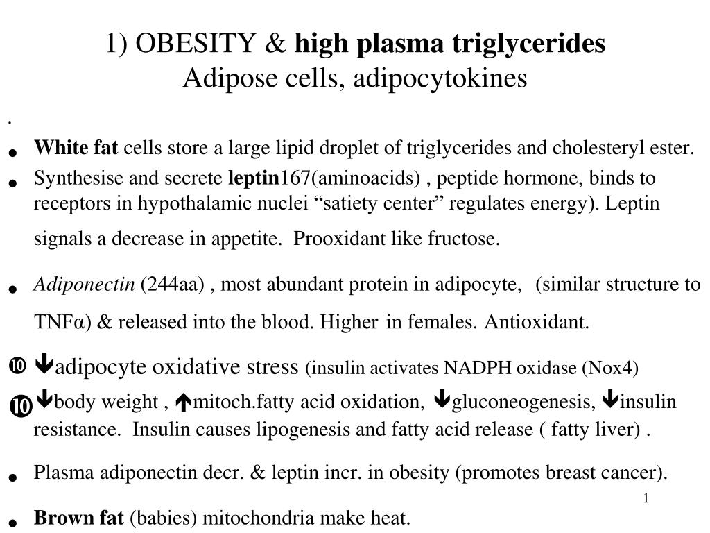 1 obesity high plasma triglycerides adipose cells adipocytokines