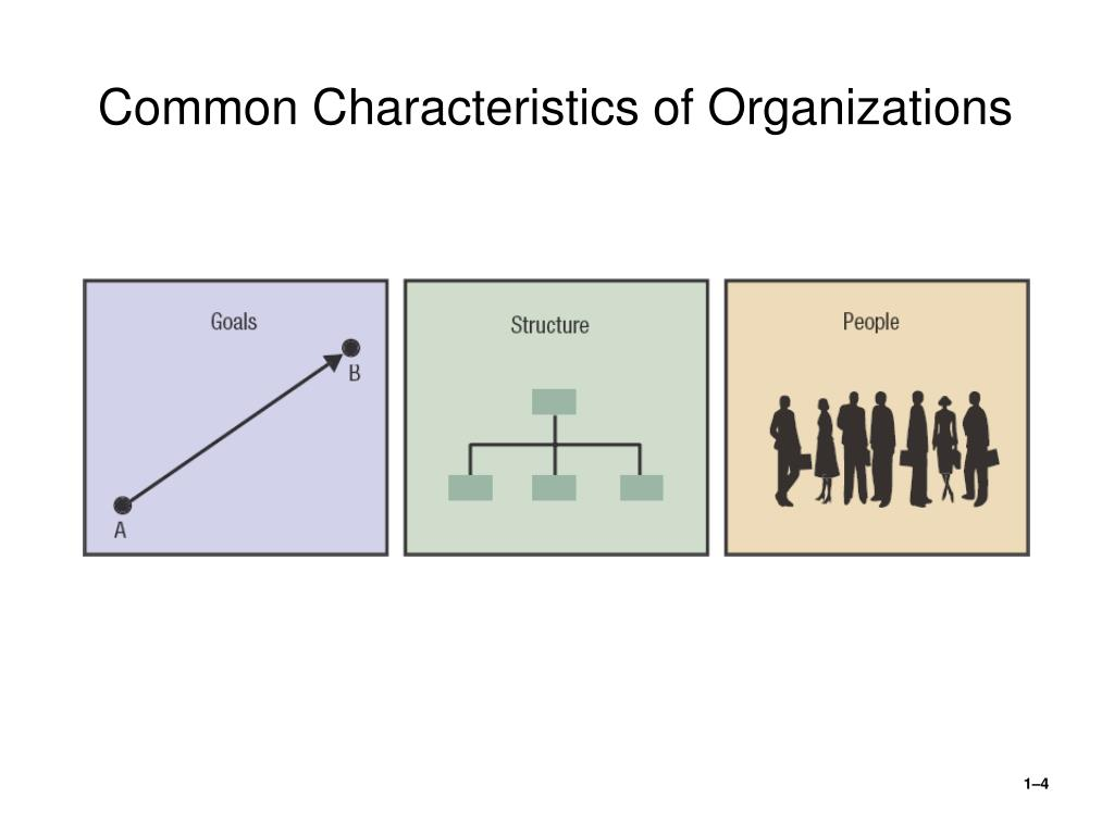 what are the traits of an effective organization