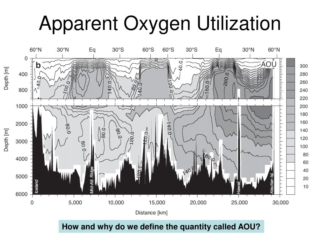 Apparent Oxygen Utilization