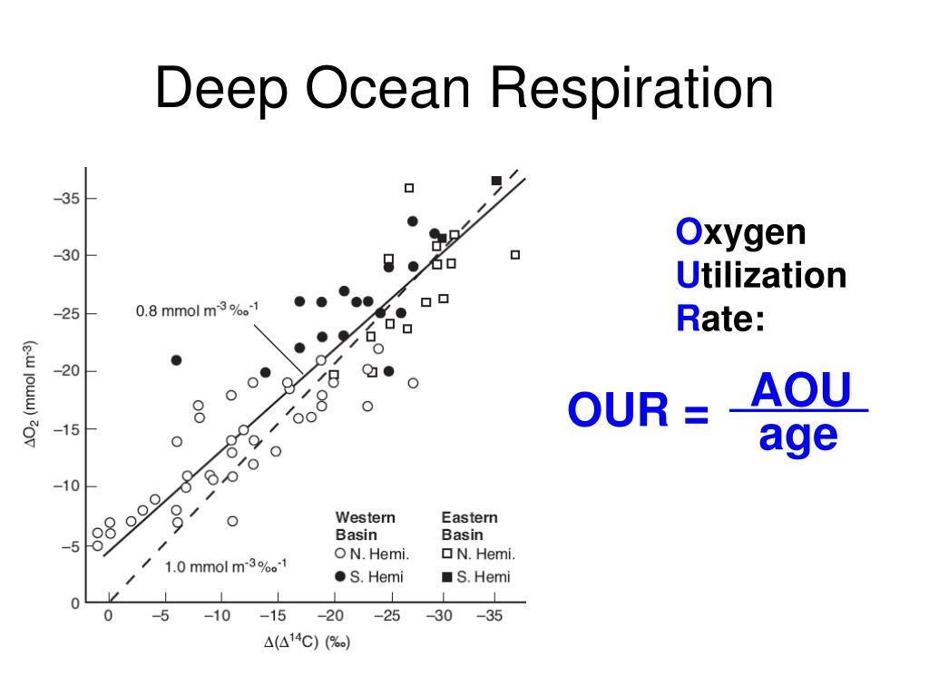 Deep Ocean Respiration