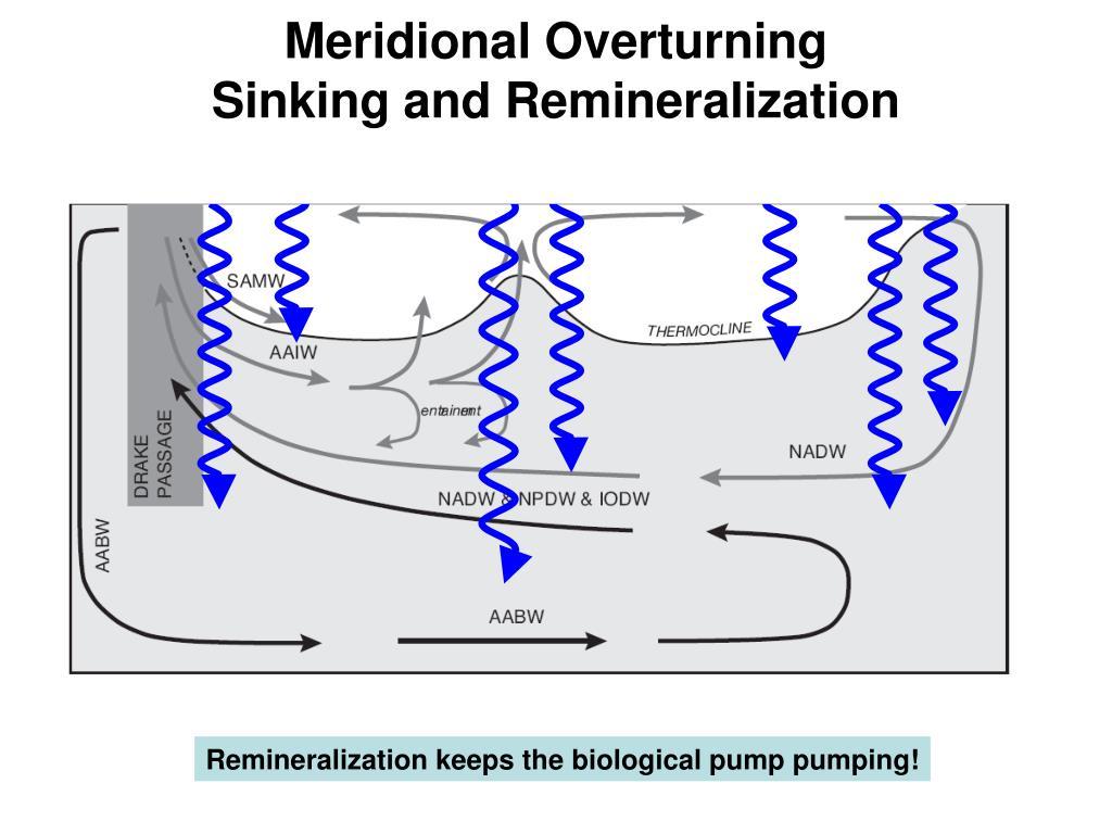 Meridional Overturning