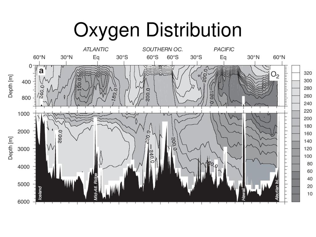 Oxygen Distribution