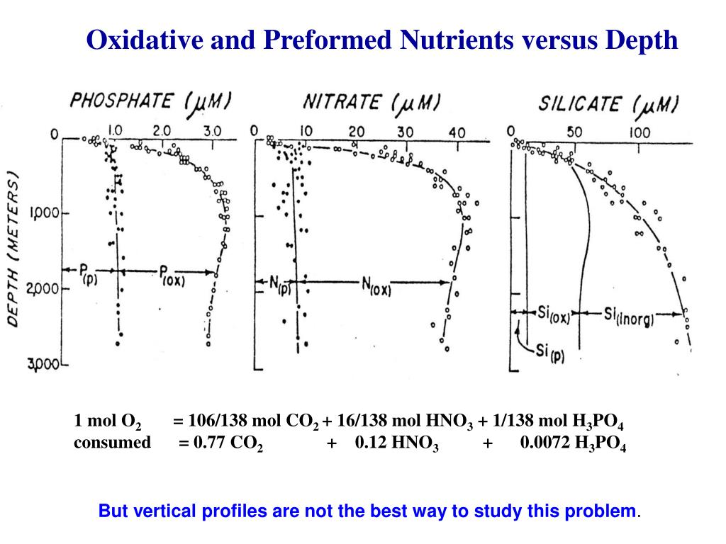 Oxidative and Preformed Nutrients versus Depth