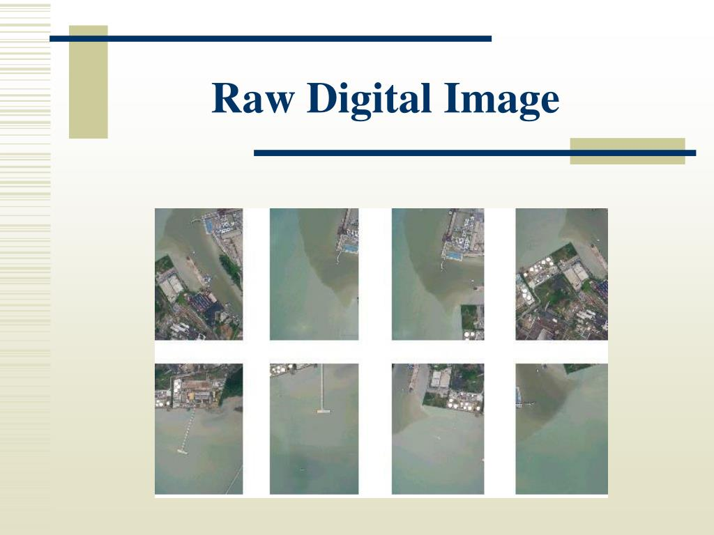 Raw Digital Image