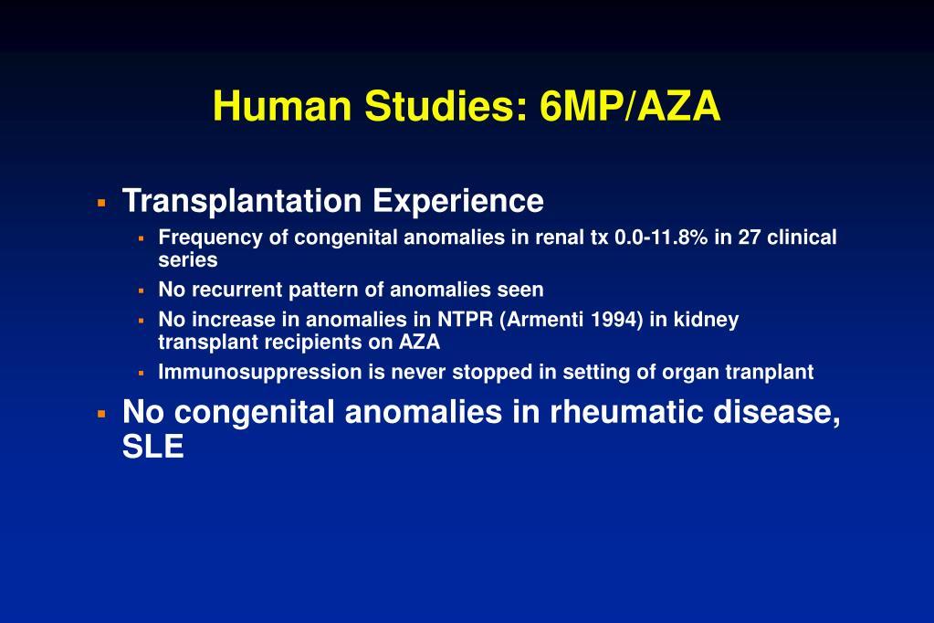 Human Studies: 6MP/AZA