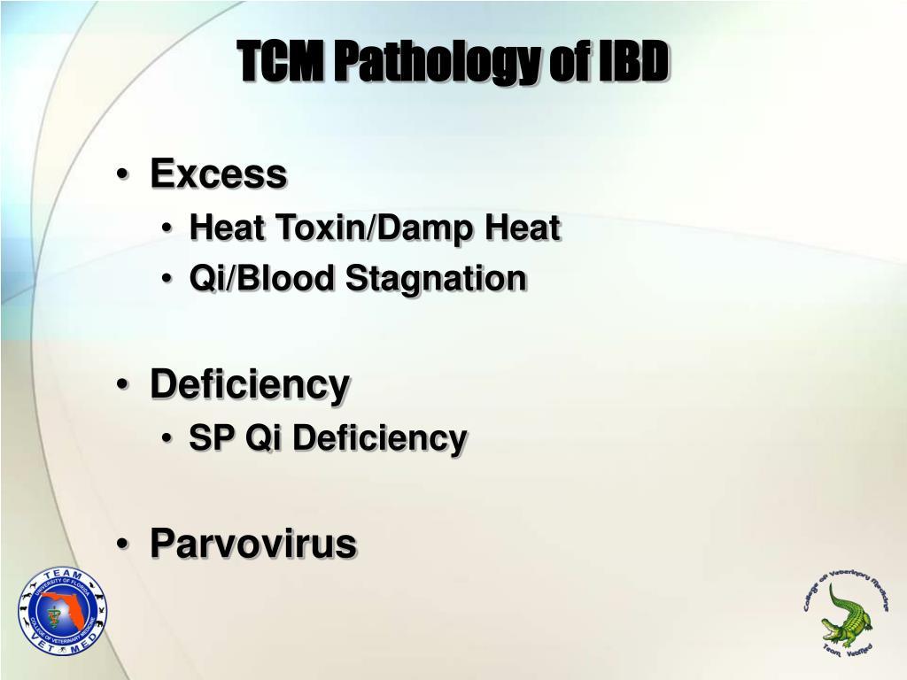 TCM Pathology of IBD