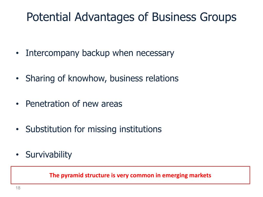 Potential Advantages of Business Groups