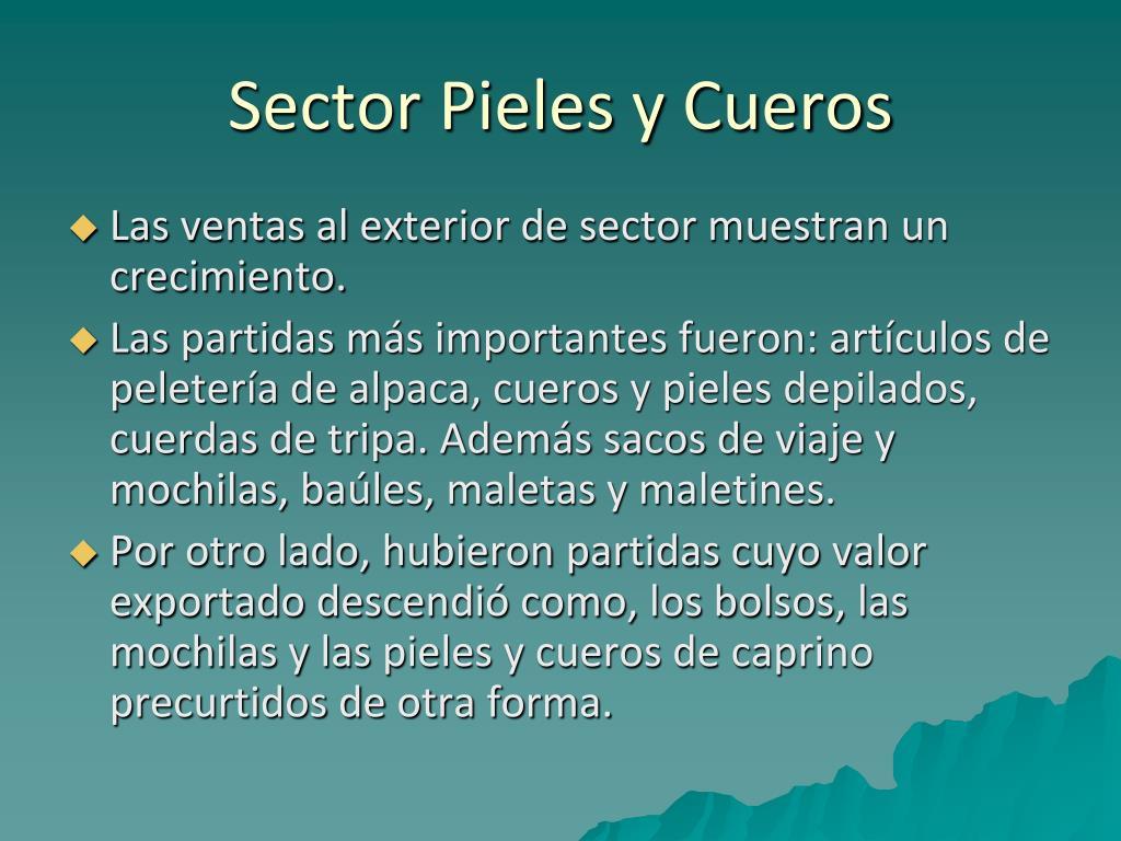 Sector Pieles y Cueros