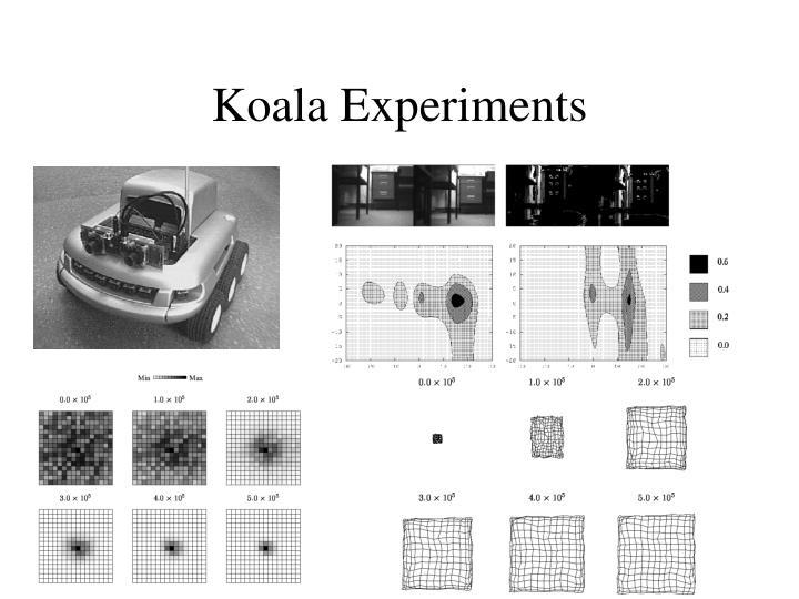 Koala Experiments