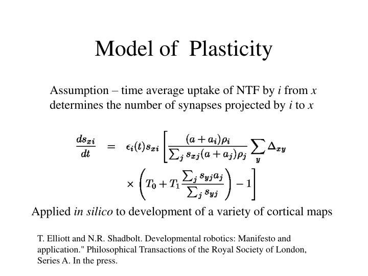 Model of  Plasticity