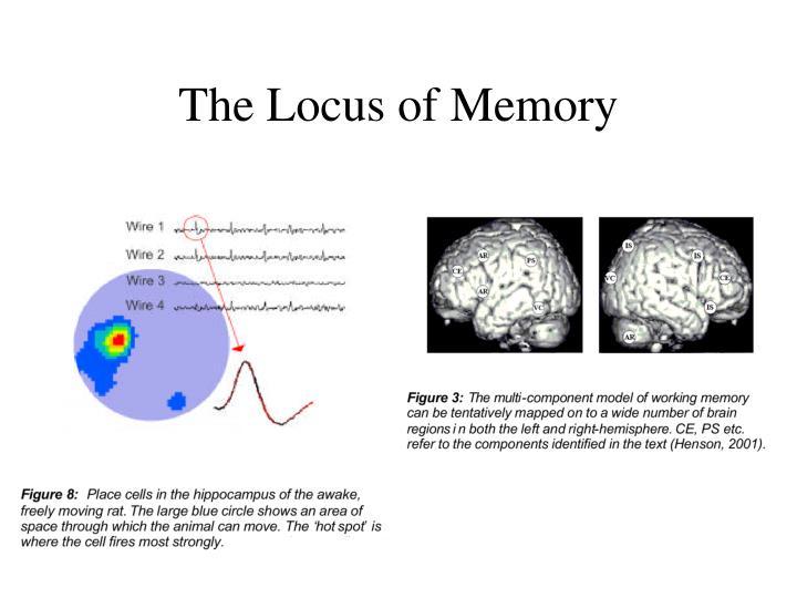 The Locus of Memory