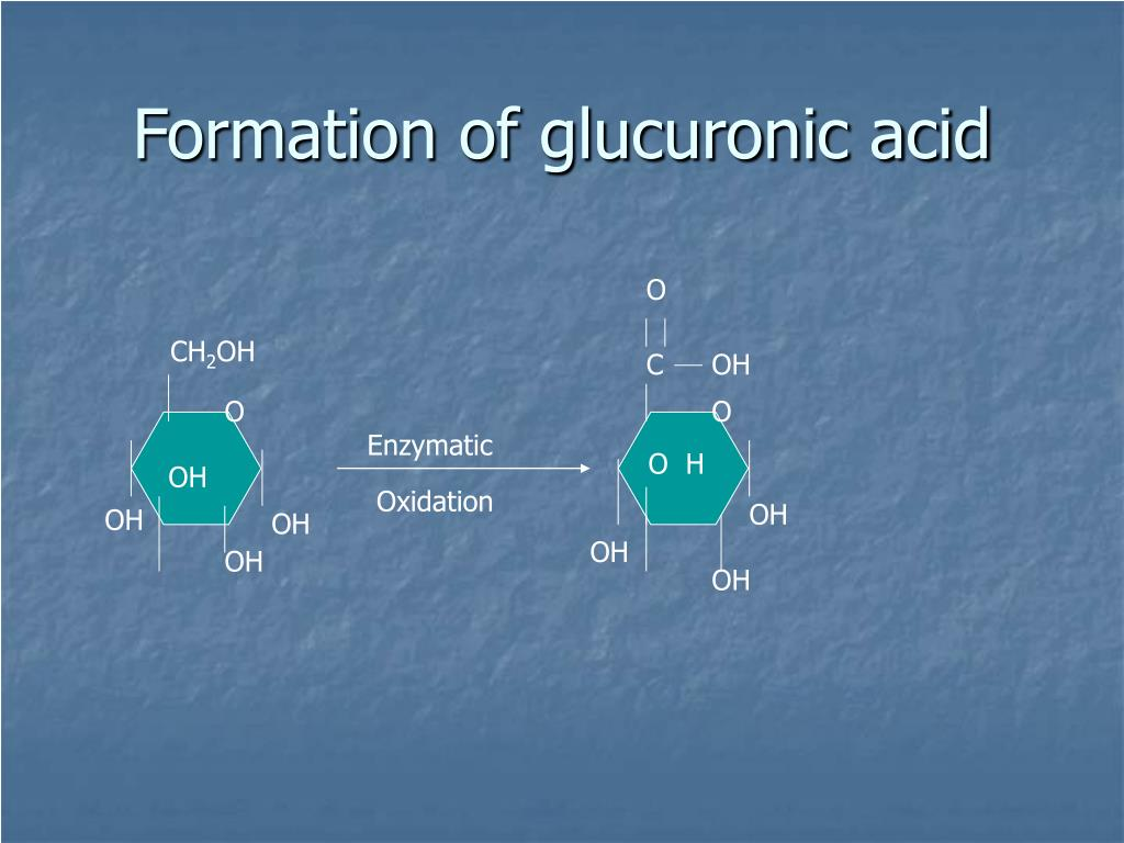 Formation of glucuronic acid