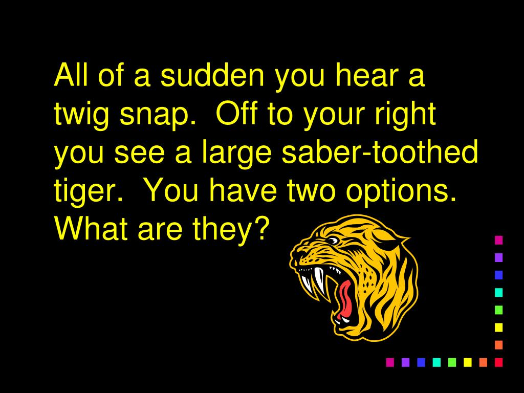 All of a sudden you hear a twig snap.  Off to your right you see a large saber-toothed tiger.  You have two options.  What are they?