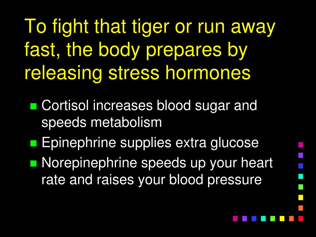 To fight that tiger or run away fast, the body prepares by releasing stress hormones