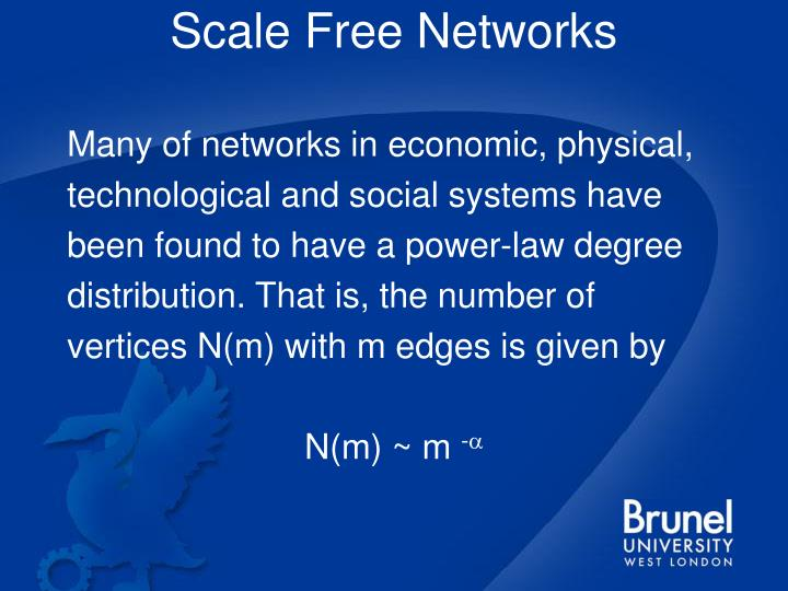 Scale free networks l.jpg