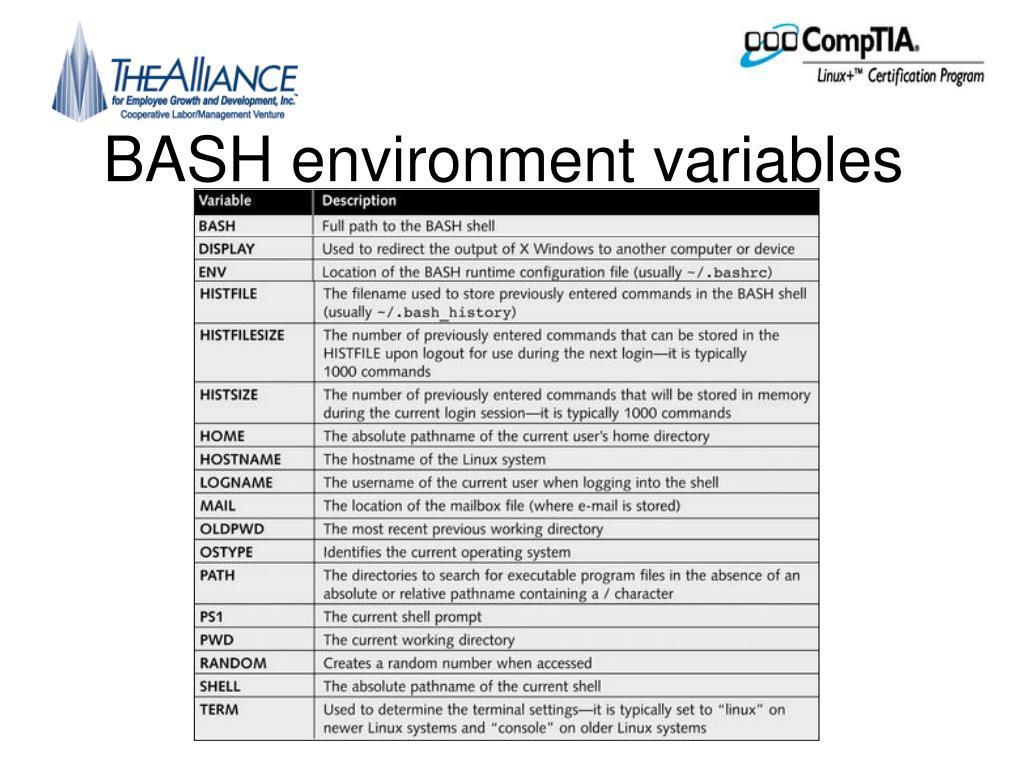 BASH environment variables