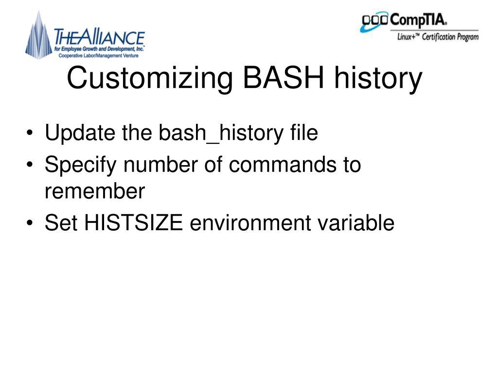 Customizing BASH history