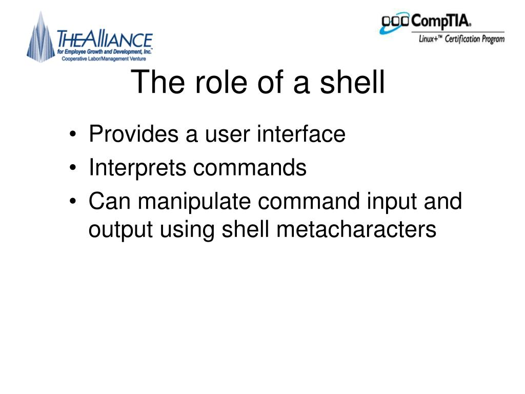 The role of a shell