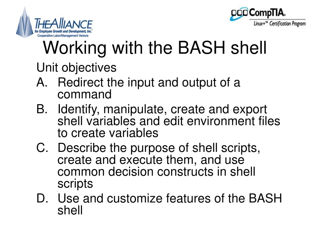 Working with the BASH shell