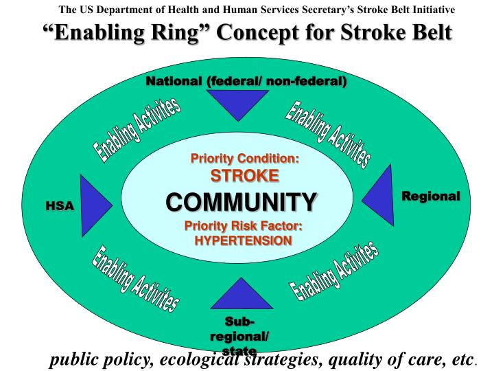 The US Department of Health and Human Services Secretary's Stroke Belt Initiative