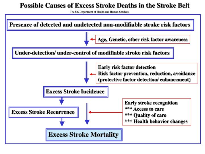 Possible Causes of Excess Stroke Deaths in the Stroke Belt